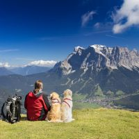 Camping and Hiking With Your Dog: What You Need to Know